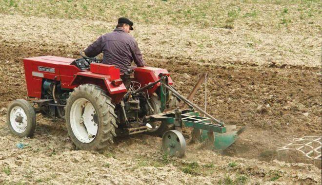 Foto: Fermierii trebuie să depună declarația unică până la 16 iulie