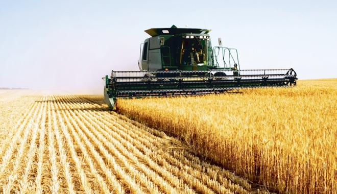 Foto: Fermierii constănţeni plătesc tribut secetei