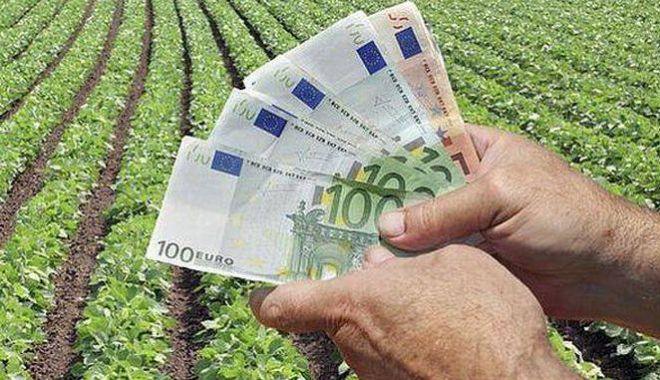 Foto: Fermierii au primit peste 88,844 milioane de euro