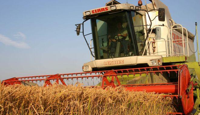 Foto: Fermierii plâng cu vorbe! Recoltele s-au înjumătățit, prețurile sunt mici, creditorii bat la ușă