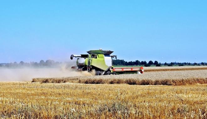 """Foto: """"Fierbe"""" piaţa terenurilor agricole.  Peste 2.000 de solicitări pe judeţ"""