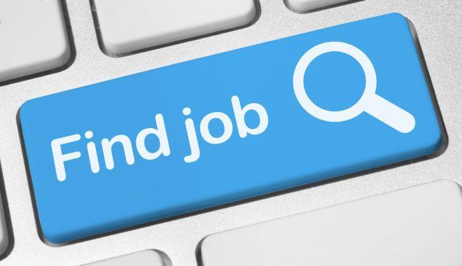 Foto: Mii de locuri de muncă vacante. Şomeri, iată ce se caută!