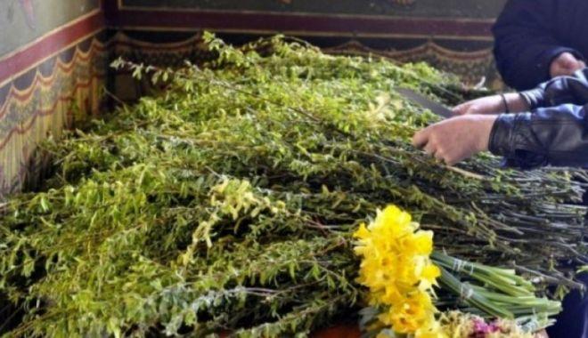 Zi de mare sărbătoare! Creștinii ortodocși sărbătoresc Floriile - florii-1586544664.jpg