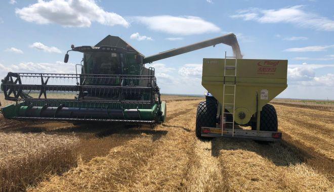 Recolta de cereale îi mulţumeşte pe fermieri. Preţurile, însă, nu! - fond1-1626887723.jpg