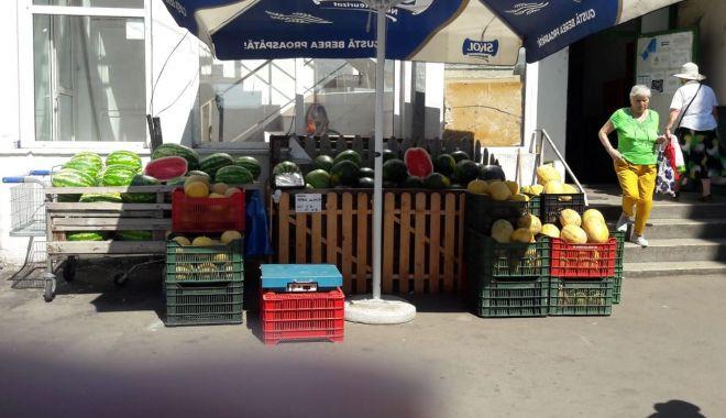 Pepeni giganţi de vânzare în pieţele din Constanţa. Unul singur ajunge şi la 20 kg - fond4print-1627056767.jpg