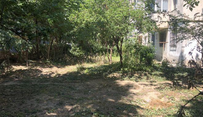 Foto: Grădinile din jurul blocurilor, lăsate în paragină de locatari