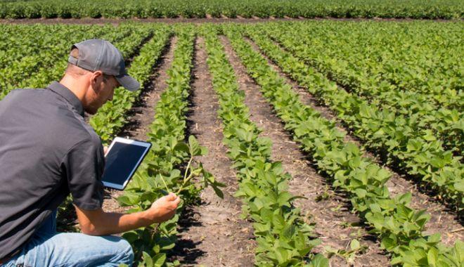 Hibrizii inovativi şi cercetarea ar putea fi soluţia unei agriculturi durabile - fondhibriziiinagricultura-1606330785.jpg