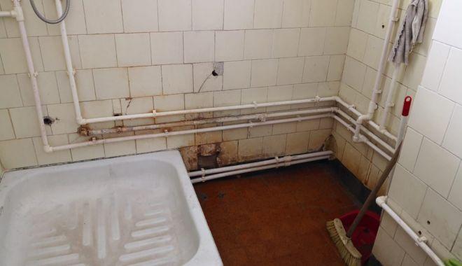 """Focar de infecție la Penitenciarul Poarta Albă. """"Șobolanii ies prin încăperi"""" - fondpenitenciarsobolani1-1618941355.jpg"""