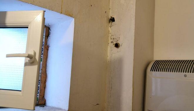 """Focar de infecție la Penitenciarul Poarta Albă. """"Șobolanii ies prin încăperi"""" - fondpenitenciarsobolani4-1618941364.jpg"""