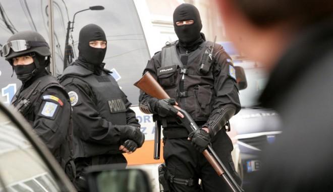 Foto: Sute de kilograme de droguri confiscate de anchetatori
