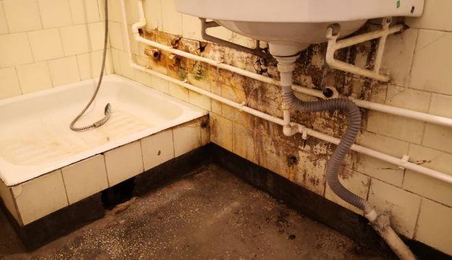 """Focar de infecție la Penitenciarul Poarta Albă. """"Șobolanii ies prin încăperi"""" - fondprintpenitenciarsobolani2-1618941374.jpg"""