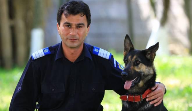 Foto: Reba, spaima infractorilor. Cum acţionează şi cum sunt pregătiţi câinii de urmă