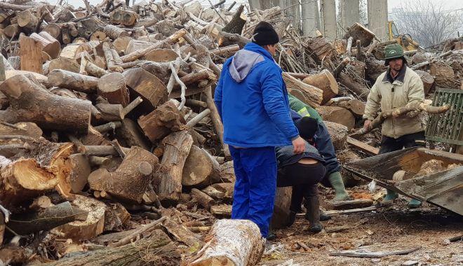 Țepe cu lemnele de foc. Protecția Consumatorilor,