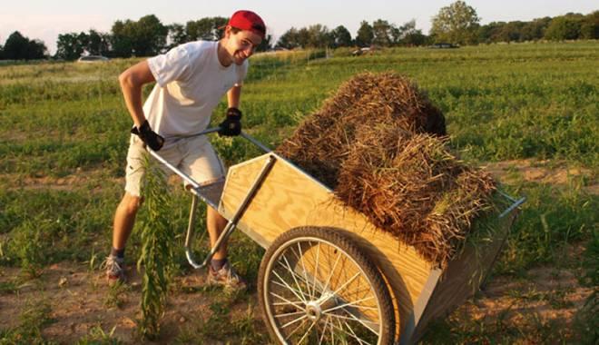 Fonduri europene pentru tinerii fermieri