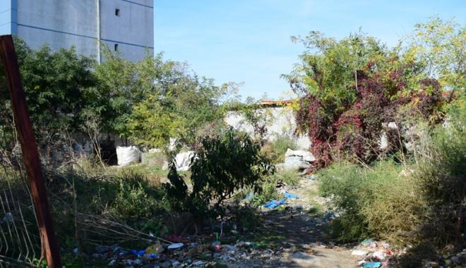 Foto: Amenzi usturătoare pentru proprietarii de clădiri şi terenuri neîntreţinute