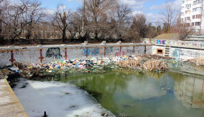 """Foto: """"Constanţa este un oraş care are zero infrastructură sportivă"""""""