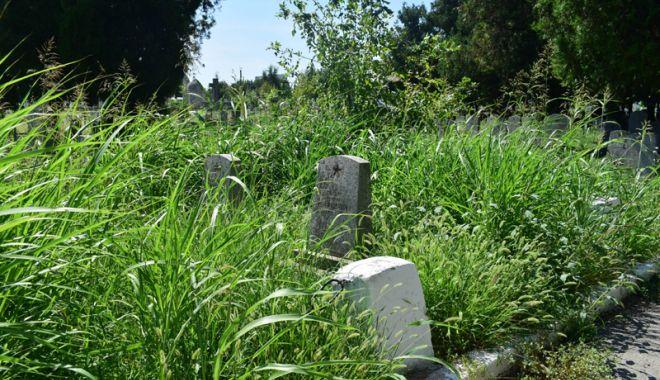 Cimitirul Eroilor din Constanţa, monument de indiferenţă şi lipsă de respect - fotofondcimitir14-1534868673.jpg