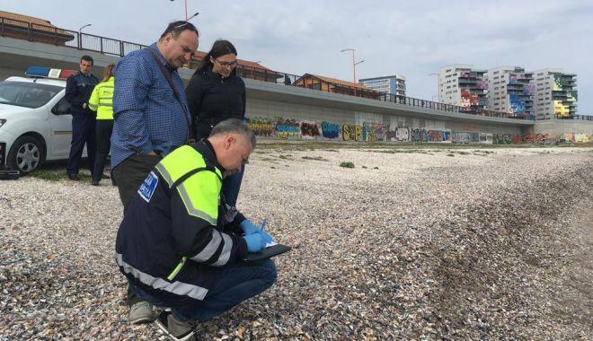 """Foto: Paradisul cocainei pe litoralul românesc. """"Nu deschideţi pachetele, vă puteţi pune în pericol viaţa!"""""""