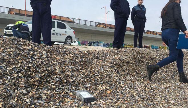 """Paradisul cocainei pe litoralul românesc. """"Nu deschideţi pachetele, vă puteţi pune în pericol viaţa!"""" - fotofonddroguri6-1554665890.jpg"""