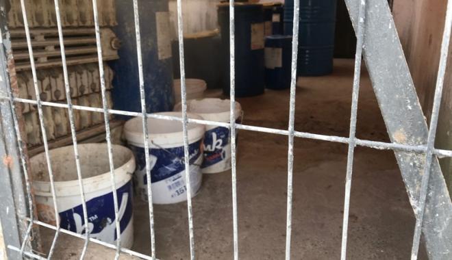 Maidanezii fac legea la Constanţa! Adăpostul e ferecat, iar străzile - pline de câini - fotofondecarisaj5-1507214892.jpg