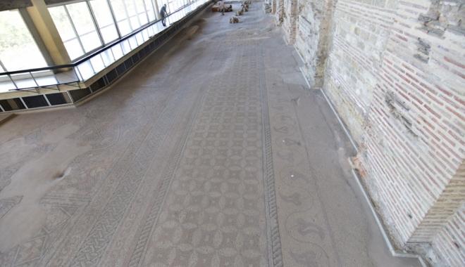 Cine mai salvează Edificiul Roman cu Mozaic?
