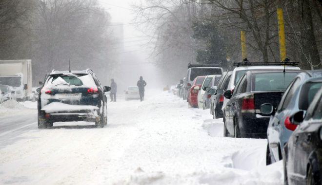 Foto: Iarna a lovit crunt judeţul Constanţa! Drumuri închise din cauza troienelor