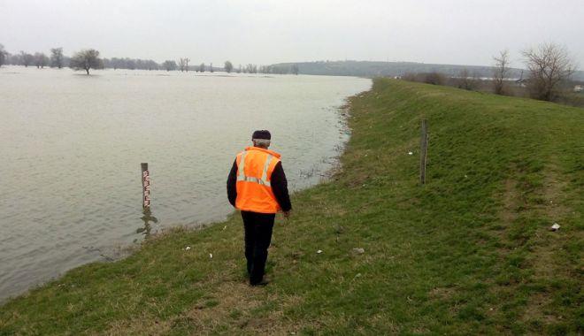Foto: Pericolul vine pe Dunăre! Fluviul umflat ameninţă localităţile constănţene