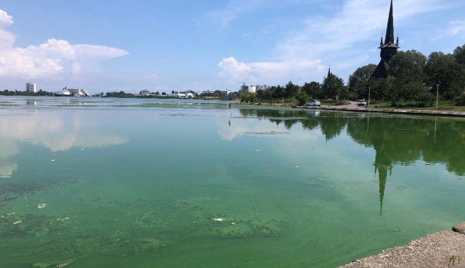 Foto: Lacurile din Dobrogea, fără stăpân?