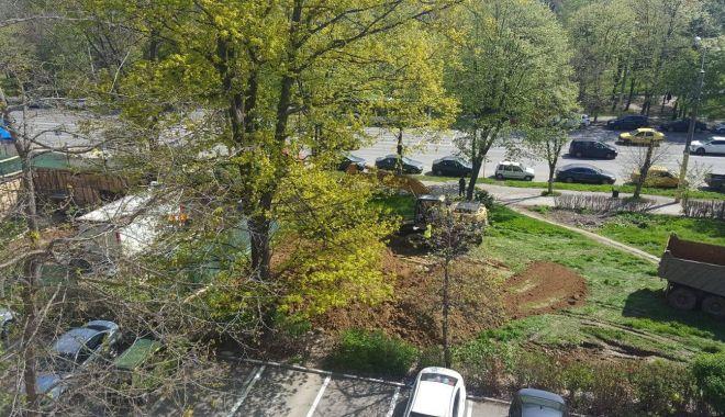 Foto: Primăria a dat, instanța a luat! O rază de speranţă pentru spaţiile verzi din Constanţa