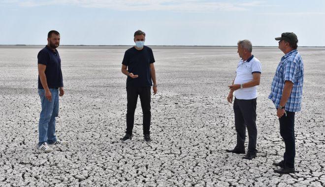 Foto: O șansă pentru salvarea lacului Nuntași.