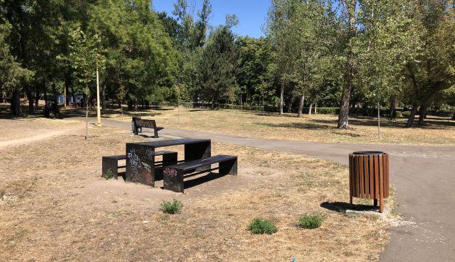 Pârjol în Parcul Tăbăcărie. Iarbă arsă și copaci uscați, în cel mai mare parc al Constanței - fotofondparcultabacarie17-1597678804.jpg