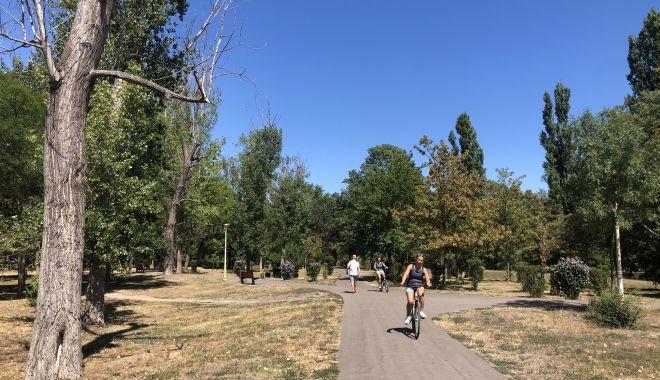 Pârjol în Parcul Tăbăcărie. Iarbă arsă și copaci uscați, în cel mai mare parc al Constanței - fotofondparcultabacarie1print5-1597678738.jpg
