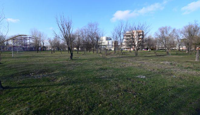 Foto: Dosarele X! Afaceri cu parcurile şi spaţiile verzi din Constanţa