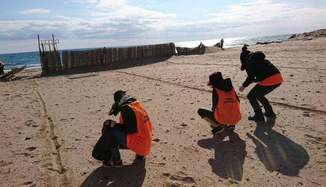 Foto: Plajele de pe litoral, sufocate de deşeuri