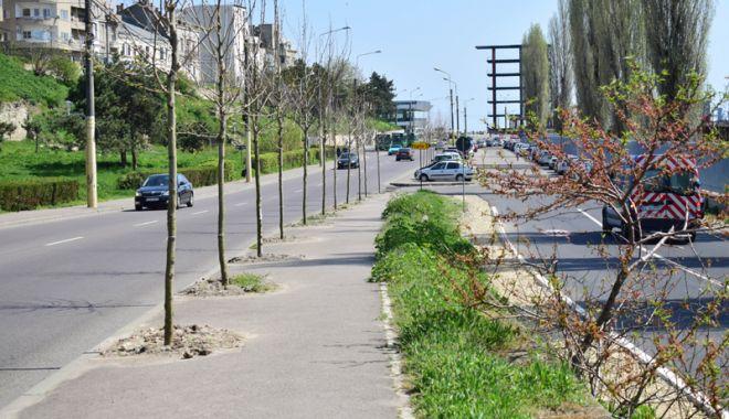 Nereguli şi probleme la proiectul de reabilitare a zonei Poarta 1 Port Constanţa - fotofondproiectreabilitarepoarta-1524586899.jpg