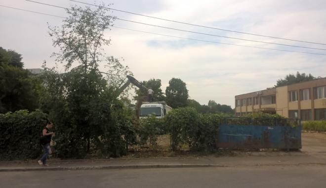 Un nou tun imobiliar la Constanţa! Au ras două grădini pentru a ridica blocuri - fotofondsantiercorbului8-1503419230.jpg