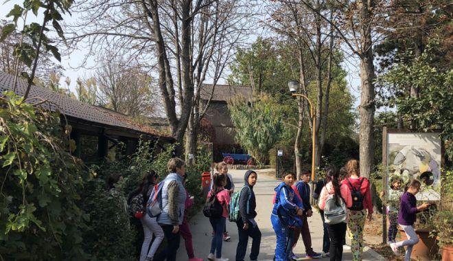 Foto: Intelect Parc se deschide la Complexul Muzeal de Ştiinţe ale Naturii