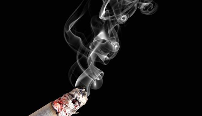 Foto: 3 plante care te ajută să te laşi de fumat
