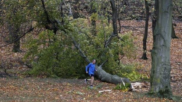 Foto: Trei persoane şi-au pierdut viaţa în urma unei furtuni produse în centrul Europei