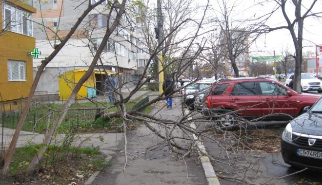 Foto: Constănţeni, atenţie unde parcaţi! Apel important de la Primăria Constanţa
