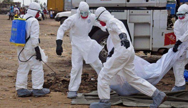 Foto: Jale la malul Dunării! Gripa porcină  se extinde în județul Constanța