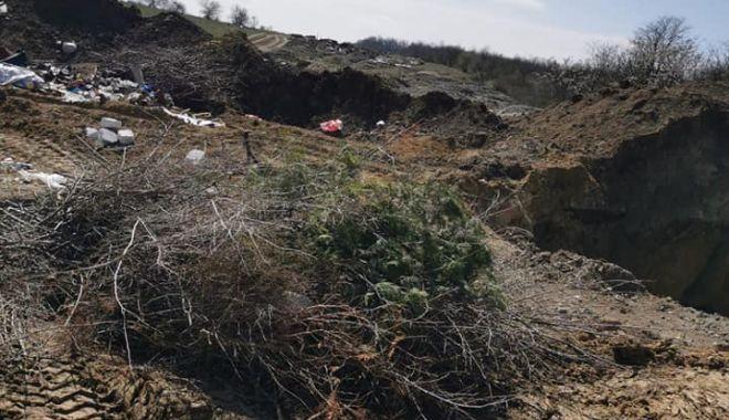 Groapă de deşeuri lângă situl Natura 2000 Fântâniţa Murfatlar - groapadedeseuri3-1618313522.jpg
