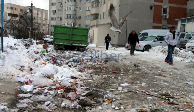 Foto: Când va relua  Polaris ridicarea gunoiului  din Constanţa