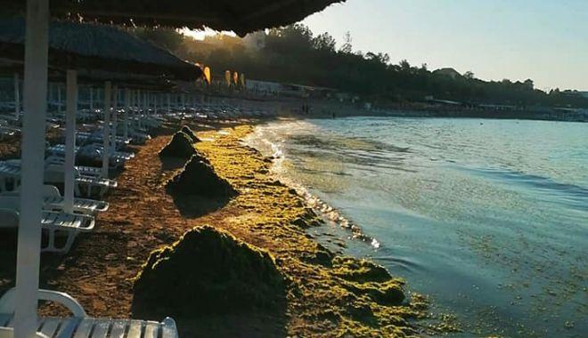 Înghesuială și mizerie! Plajele, sufocate sub gunoaie! - gunoaiealgeplajasursaabadl-1593703023.jpg