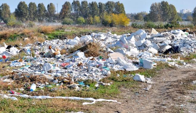 Foto: Locuiesc într-o groapă de gunoi