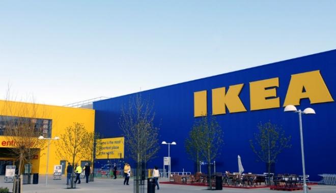 Foto: Ikea a mai cumpărat 12.800 de hectare de pădure în România