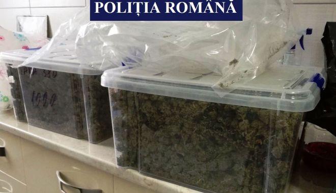 Foto: PERCHEZIŢII LA CONSTANŢA! 7,5 kilograme de cannabis, ridicate în urma unui flagrant