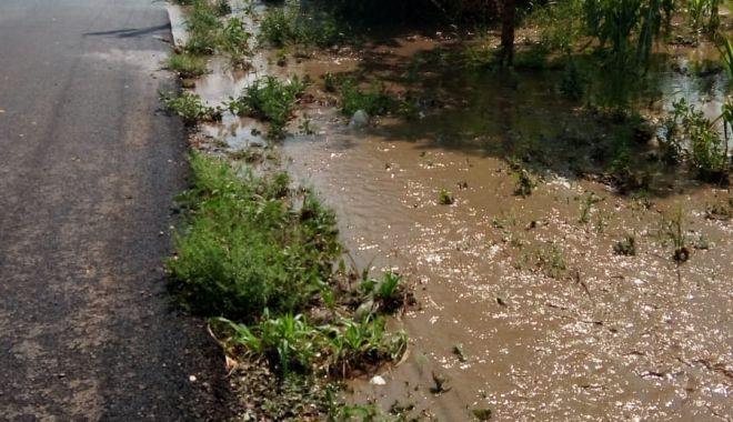 IMAGINI APOCALIPTICE! Cum arată Constanța după potop / Galerie foto-video - img20190803wa0014-1564853221.jpg