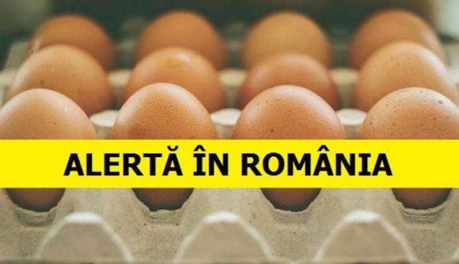 Foto: Ouăle contaminate cu Fipronil nu au ajuns la consumatori