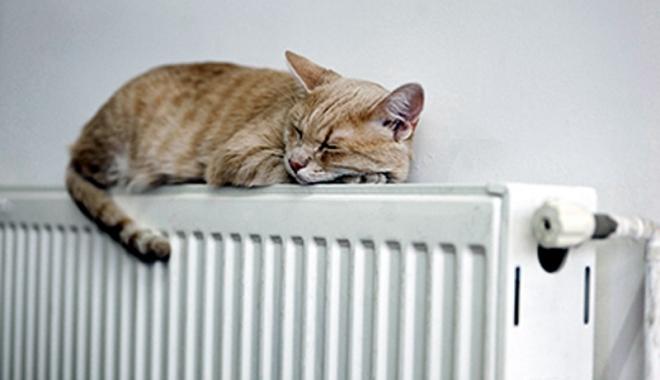 Foto: A început distribuţia formularelor pentru ajutoarele de încălzire, la Constanţa! Iată de unde le puteţi lua
